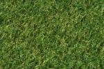 B05/0I080100 - Verde Muschio